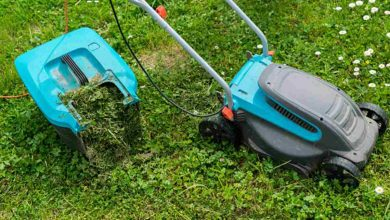 Makita Cordless Lawn Mower review