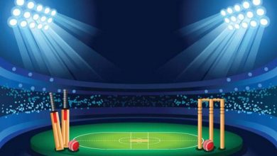 IPL cricket fantasy league